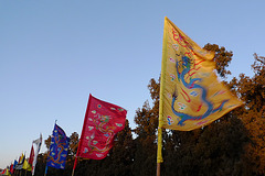 Novorocne vlajky