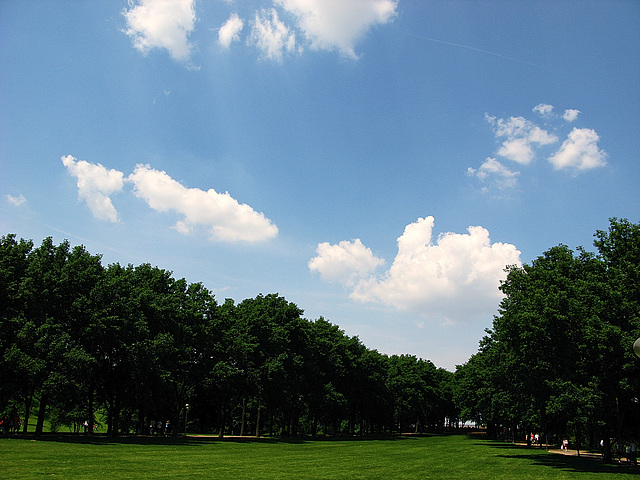 Arch Park 2