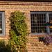 Porte et fenêtres avec un beau banc tout en fleurs /  Door-windows and flowery bench wonder -  Laholm / Suède - Sweden.  25 octobre 2008