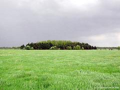 DSCN0802 Ipweger Moor