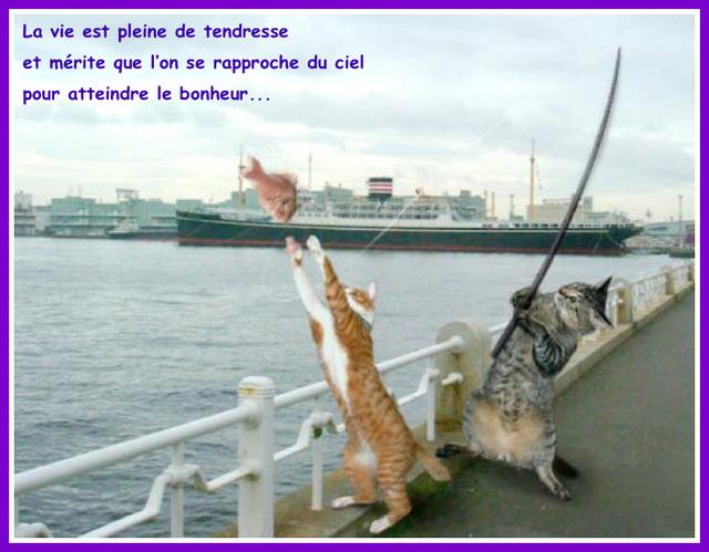 Jacques Brel chante : La Tendresse