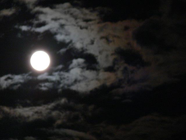 Vollmondnacht 2009-07-06