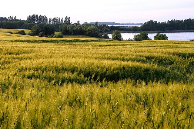 Ostsee bei Wismar