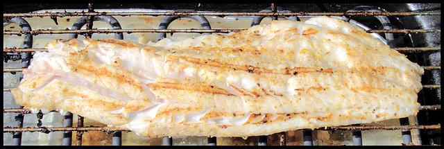 Gegrilltes Seelachsfilet / barbecued pollack