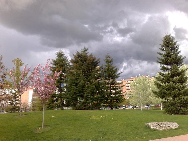 Pamplona: parque de Yamaguchi.