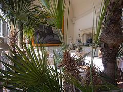 Schlosscafe im Palmenhaus