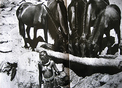 Sebastião Salgado, NAMIBIA (1)