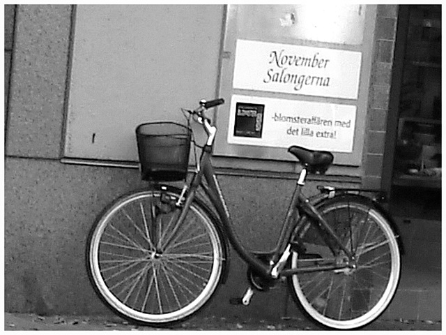 Vélo suédois de Novembre Salongema /  November Salongerna swedish bike -  Ängelholm  /  Suède - Sweden.   23 octobre 2008 - N & B