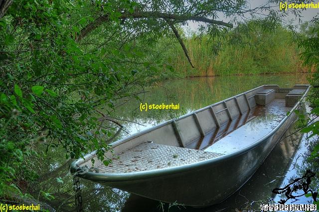 Boot im Altwasser