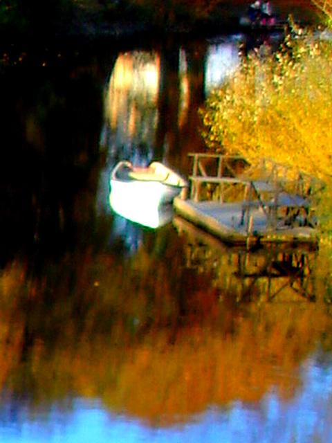 Reflet de rivière et fleurs de rive / River reflection and bank flowers - Ängelholm / Suède / Sweden.  23 octobre 2008-  Chaloupe psychédélique