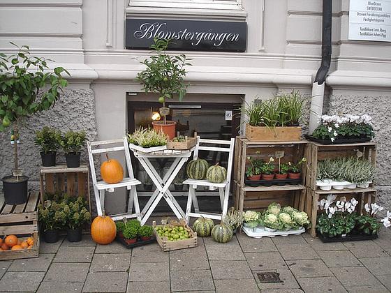 Délice visuel d'un trottoir Blomsterganten /  Blomsterganten sidewalk display  -   Helsingborg / Suède - Sweden.  22 octobre 2008