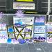 Délice visuel d'un trottoir Blomsterganten /  Blomsterganten sidewalk display - Negative artwork with a hint of yellow / Négatif et touche de jaune