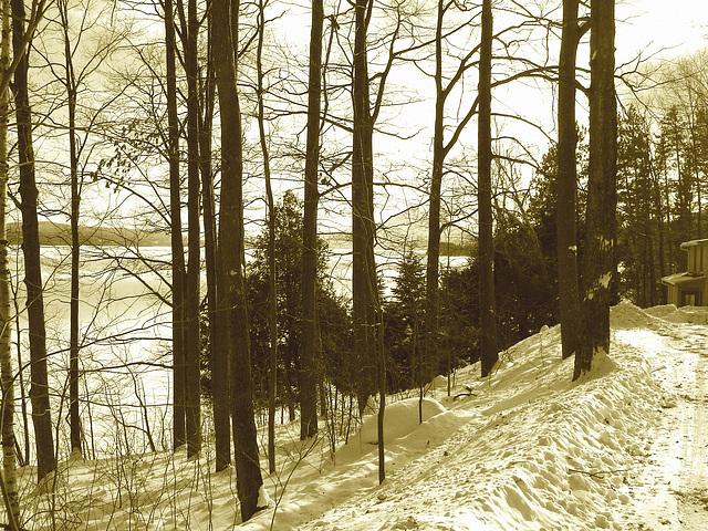 -Paysages d'hiver à proximité de l'abbaye de St-Benoit-du-lac au Québec .  7 Février 2009 Sepia