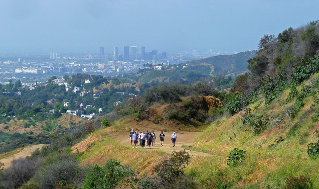 Hollywood Sign Hike (3978)