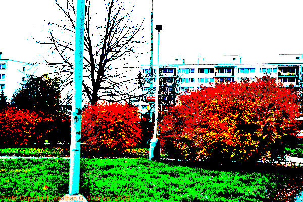 Fall Colors in Sidliste Haje, Supersaturated version, Prague, CZ, 2008