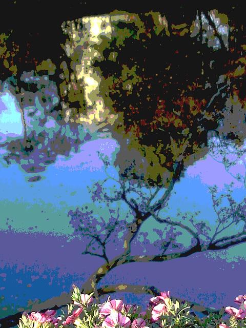 Reflet de rivière et fleurs de rive / River reflection and bank flowers - Ängelholm / Suède / Sweden.  23 octobre 2008- Recadrage postérisé