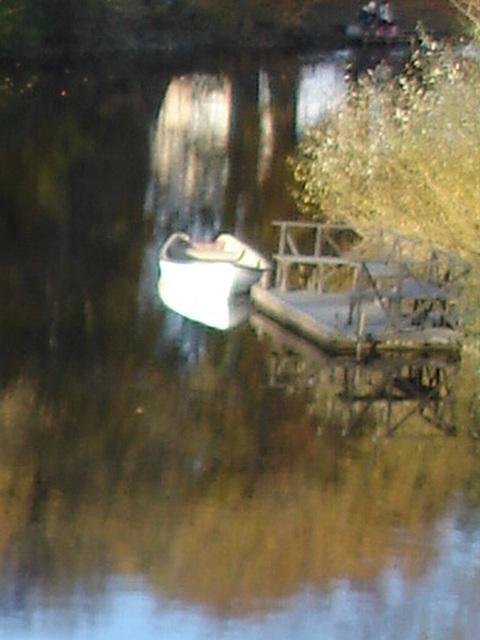 Reflet de rivière et fleurs de rive / River reflection and bank flowers - Ängelholm / Suède / Sweden - Recadrage flou original