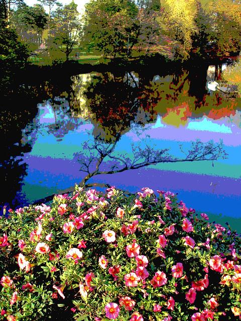 Reflet de rivière et fleurs de rive / River reflection and bank flowers - Ängelholm / Suède / Sweden.  23 octobre 2008- Postérisée avec photofiltre
