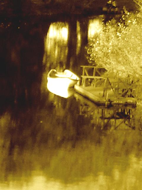 Reflet de rivière et fleurs de rive / River reflection and bank flowers - Ängelholm / Suède / Sweden.  23 octobre 2008- Chaloupe psychédélique sépiatisée