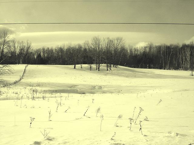 Paysages d'hiver à proximité de l'abbaye de St-Benoit-du-lac au Québec .  7 Février 2009- Photo ancienne / Vintage