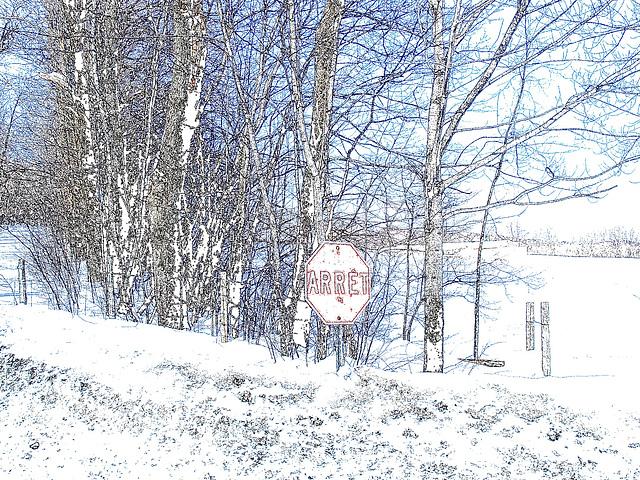 Paysages d'hiver à proximité de l'abbaye de St-Benoit-du-lac au Québec .  7 Février 2009- Colourful outlines / Contours de couleurs