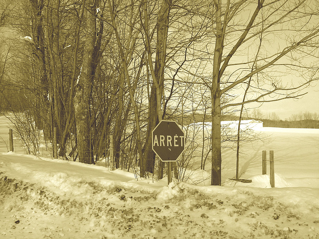 Paysages d'hiver à proximité de l'abbaye de St-Benoit-du-lac au Québec .  7 Février 2009 -  Sepia