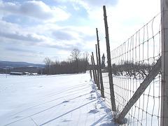 Paysages d'hiver à proximité de l'abbaye de St-Benoit-du-lac au Québec