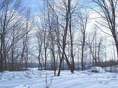 L'hiver et son abbaye