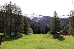 Blick vom Geopark Bletterbachschlucht...