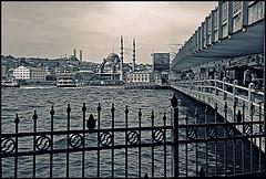 Galata bridge - duotone