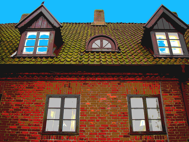 Maison  Skanegarden house - Båstad / Suède - Sweden.  21-10-2008 -  Postérisation