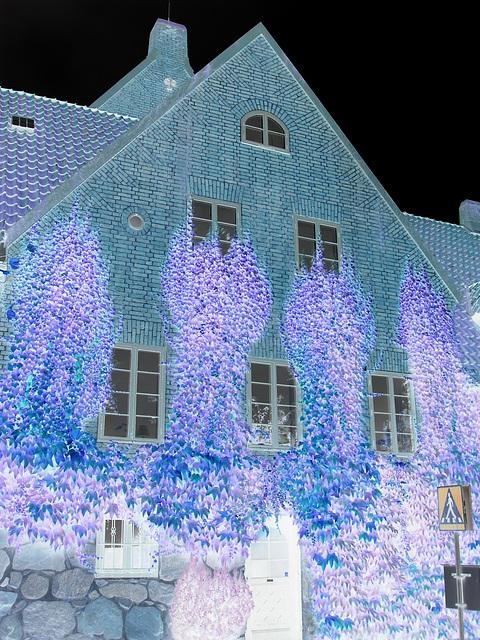 Maison  Skanegarden house - Båstad / Suède - Sweden.  21-10-2008 -  Effet de négatif