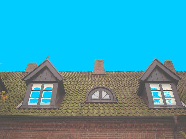 Maison  Skanegarden house - Båstad / Suède - Sweden.  21-10-2008 -  Éclaircie avec bleu ajouté