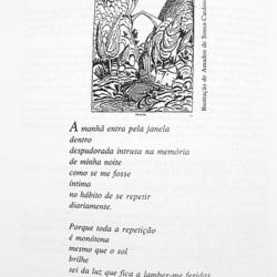 VIOLA DELTA, Volume XXXIII, Edições Mic, May, 2002