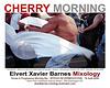 CherryMorning.WDC.April2009.EXBMixology