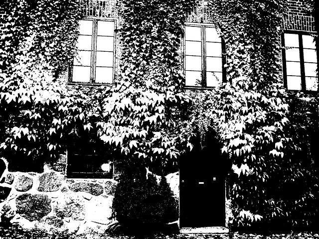 Maison  Skanegarden house - Båstad / Suède - Sweden.  21-10-2008 -  Bichromisée en N & B