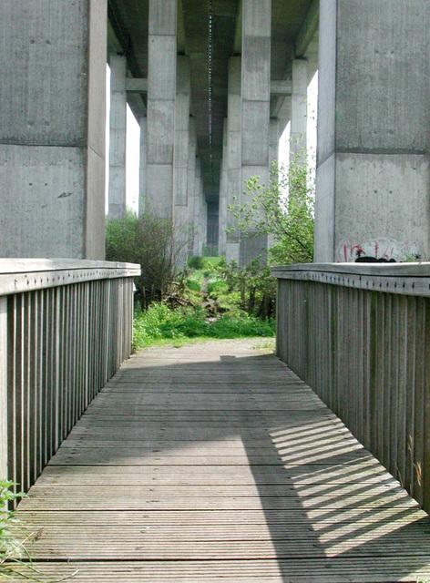DSCN0615 Brücke unter der Brücke