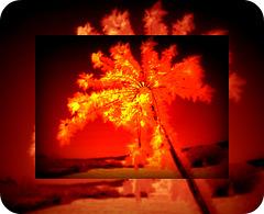une lueur dans le coeur, une larme dans l'oeil une prière da ns la tête, une vieille douleur une vive rancoeur, là ou meurt le pardon