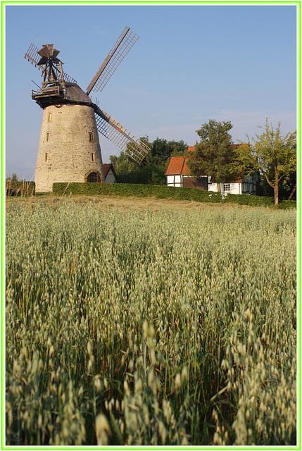 die Liesbergmühle in Enger