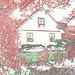 Maison suédoise dans un coin paisible -  Black & White swedish house - Båstad  / Sweden - Suède.   21-10-08 -  Colorful outlines / Contours de couleur