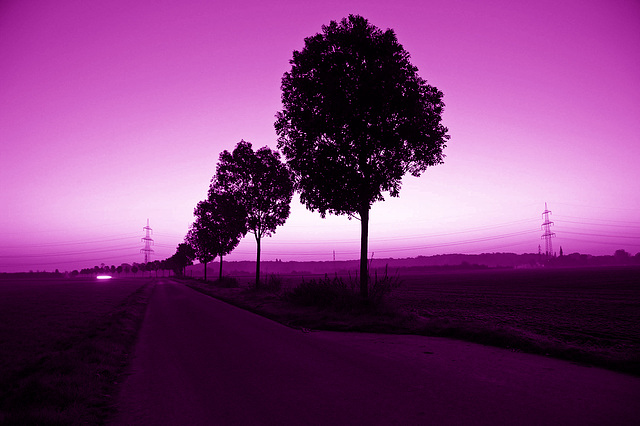 Ultra Violet (Light My Way)