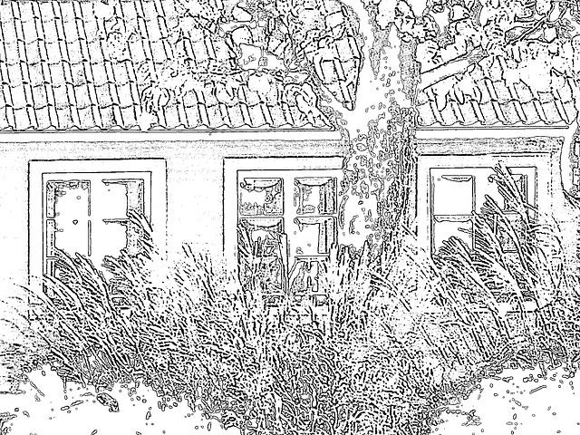 Båstad  /  Suède - Sweden.  25 octobre 2008- Black outlines artwork / Contours noirs