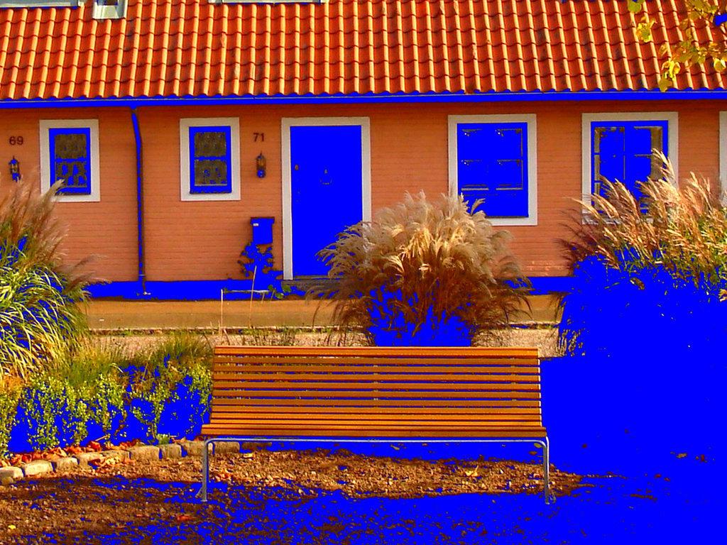 Båstad  /  Suède - Sweden.  25 octobre 2008 -  Négatif de négatif  avec changement de couleurs