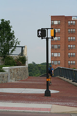 01.WWBTrail.WashingtonStreetDeck.VA.8June2009