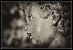 Gueule d'ange / Angel face