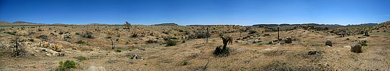 High Desert Pano (1)