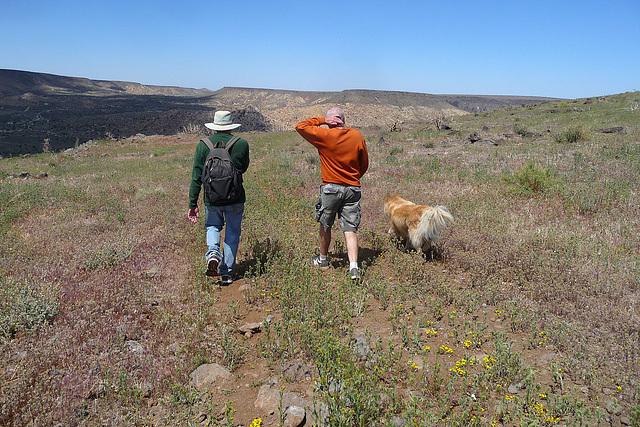 Hiking On The Mesa (4093)