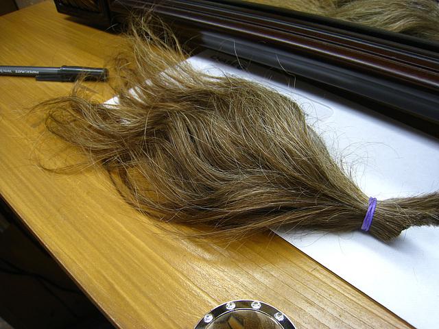 Karl Baker's ponytail (2854)