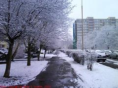 Second Snow in Sidliste Haje, Picture 2, Prague, CZ, 2009