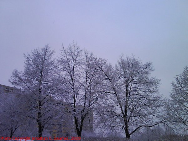Second Snow in Sidliste Haje, Picture 3, Prague, CZ, 2009